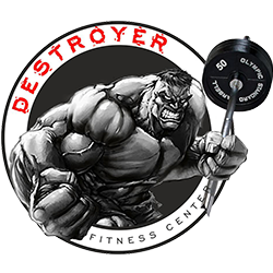 destroyer250x250